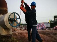 沁阳发电分公司积极推进周边绿色产业发展
