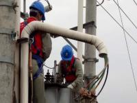 电力公司党员服务队:危难关头显担当 及时除险保安全
